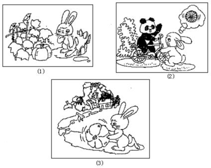 二年级看图写话喂兔子