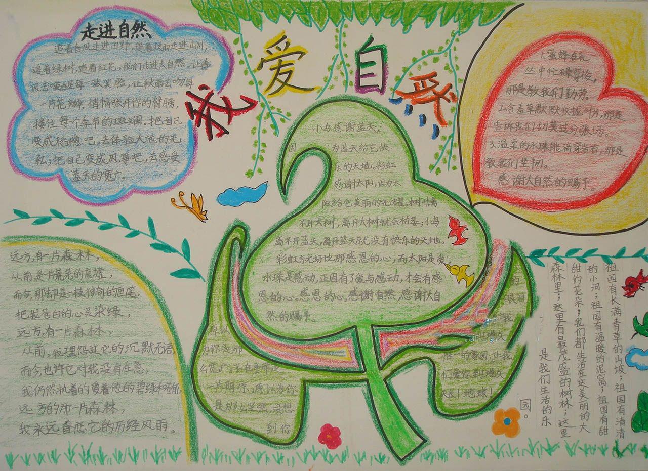 小学生二年级手抄报版面设计图展示