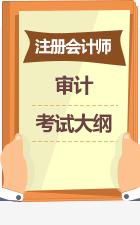 注册会计师审计考试大纲