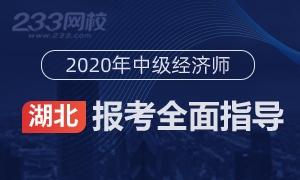 湖北省经济师考试时间图片